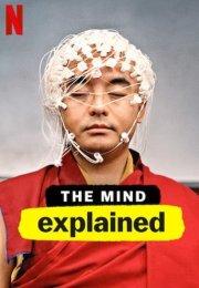 The Mind, Explained 1. Sezon 4. Bölüm